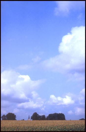 Clocher au champ de ble-Mont-de-Marsan
