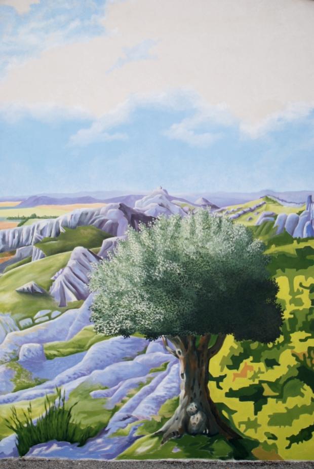 SENAS-olivier