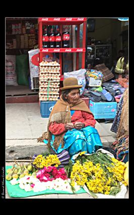 Bolivie, Copacabana marché aux fleurs 2, le 12 novembre 2017