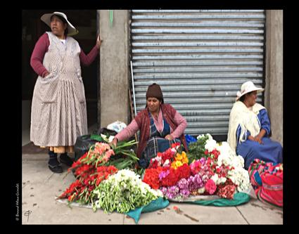 Bolivie, Copacabana marché aux fleurs1, le 12 novembre 2017 copie