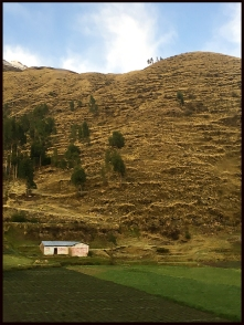 2-Arequipa->Cusco-4 résineux