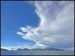 Lac Titicaca arbre et nuage