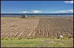 Titicaca vers Puno3