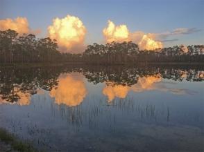 Everglades sunset 0