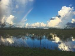 Everglades,rainbow