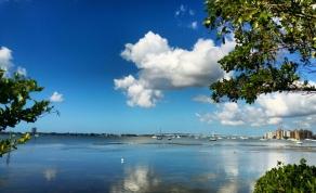 Sarasota, les 2 aigrettes et le pont